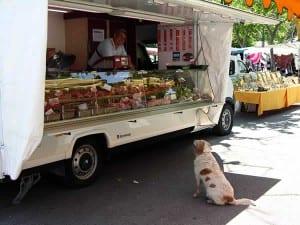 Geen hond te bekennen op de markt?