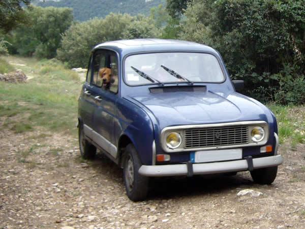 Bijzondere ontmoeting bij Gaujac met een Renault 4