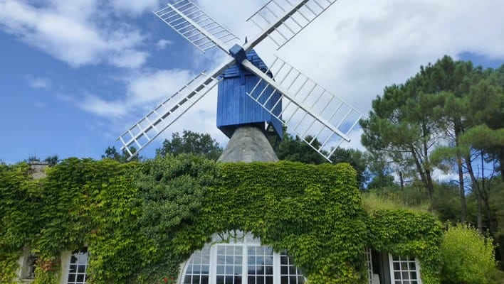Le Moulin Bleu Bourgueil