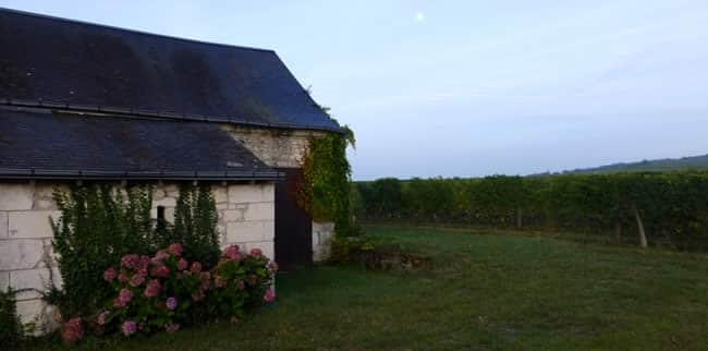 Loire wijn tips