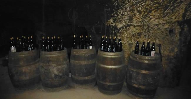 Wijnproeven onder een wijngaard