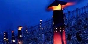 kacheltjes in de wijngaarden van Chablis