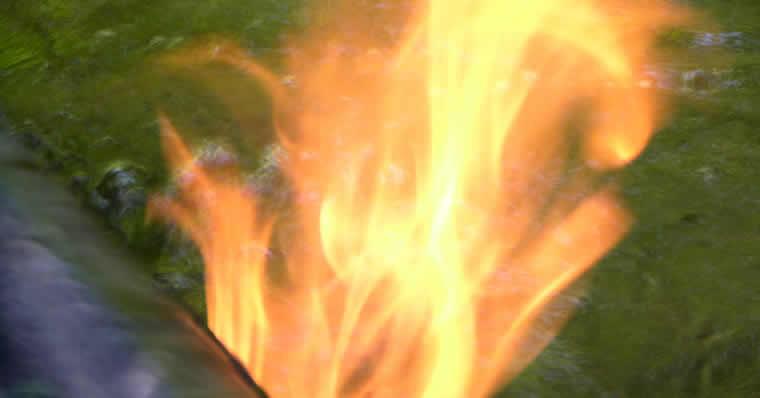 Brand in het moeras