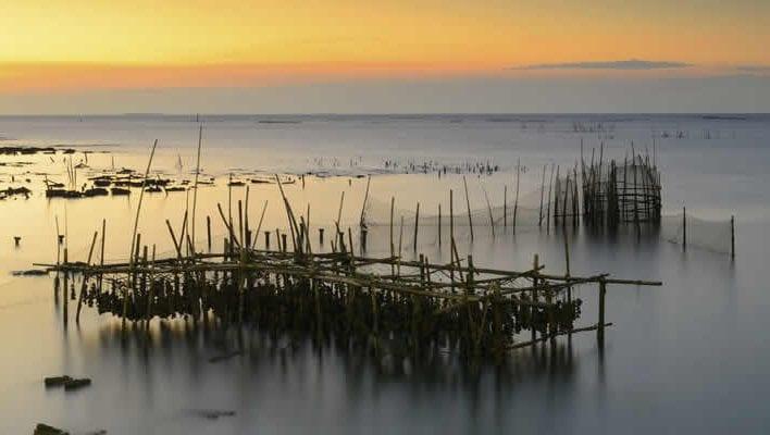 Fietsen naar Cap-Ferret bij het Bassin d'Arcachon