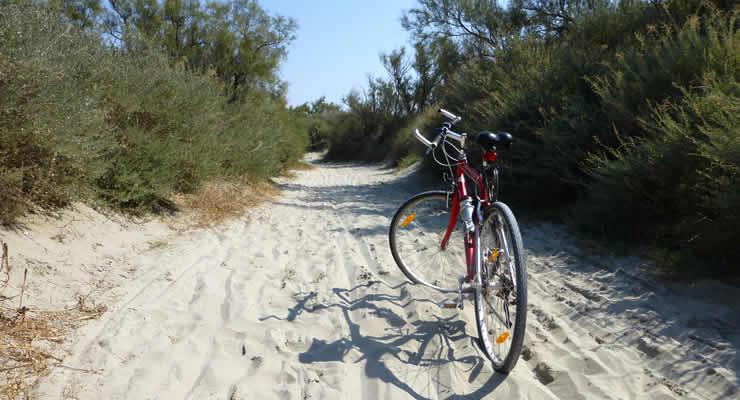 Wandelen en fietsen in de Gard