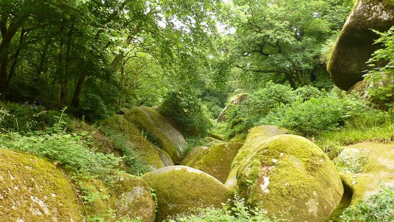 Het woud van Huelgoat