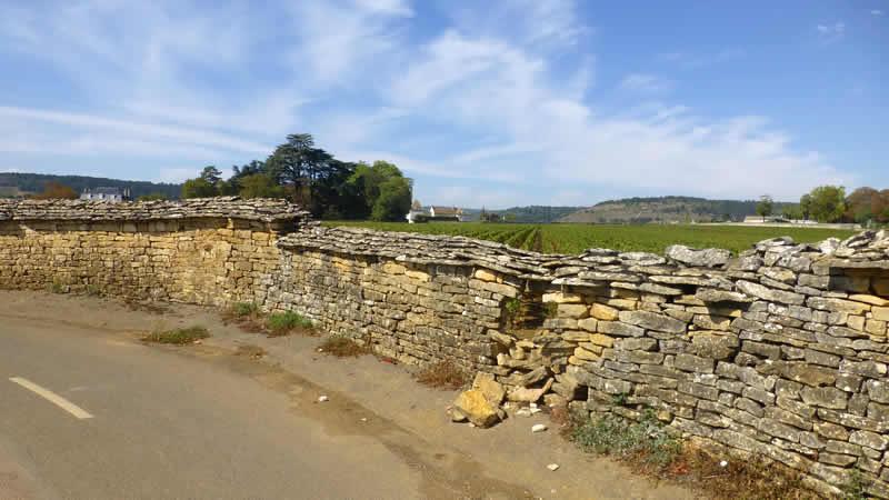 Wandelen en fietsen in de Franse wijngaarden