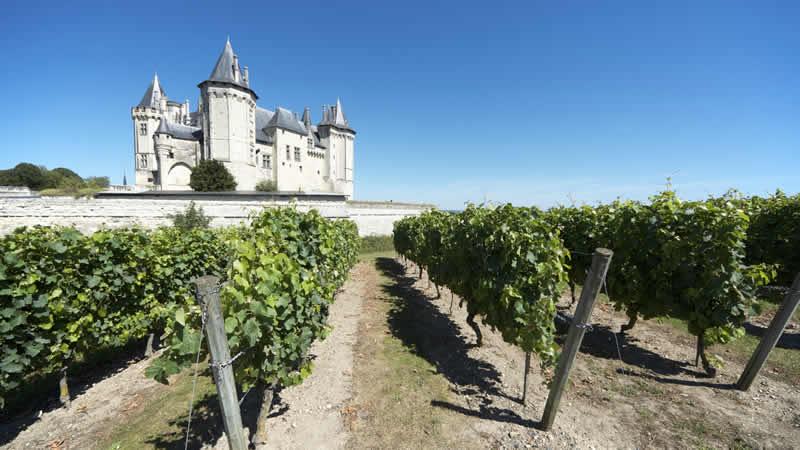 Rondreis Loire: Omgeving Saumur
