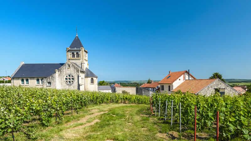 Franse wijngaarden die dichtbij liggen.