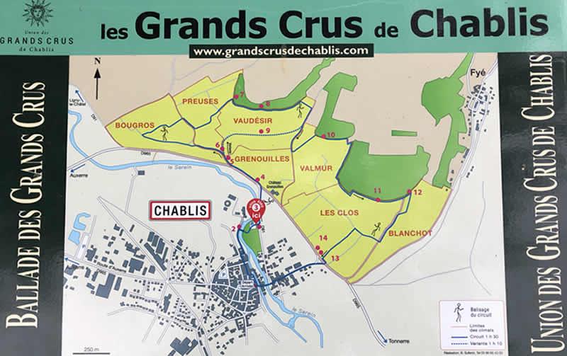 wandeling in de Grand Cru wijngaarden