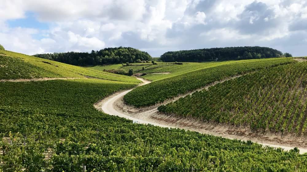 Chablis, een beroemd wijndorp
