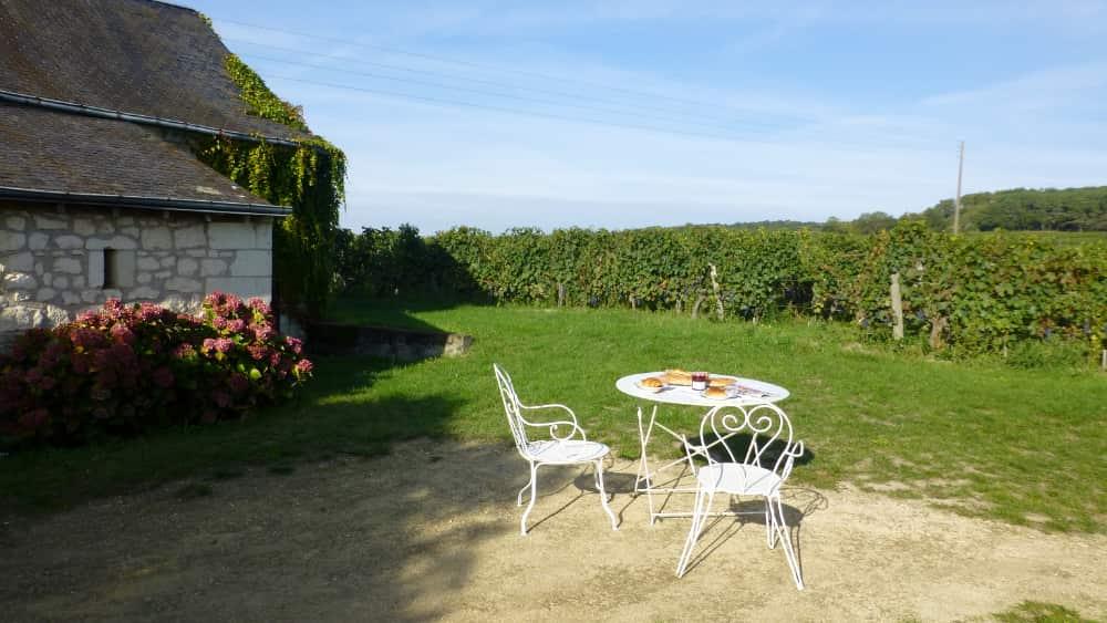 De wijngaarden bij Bourgueil