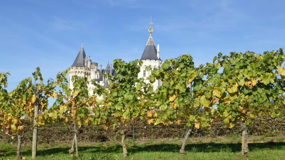 Saumur en de wijngaarden van Bourgueil