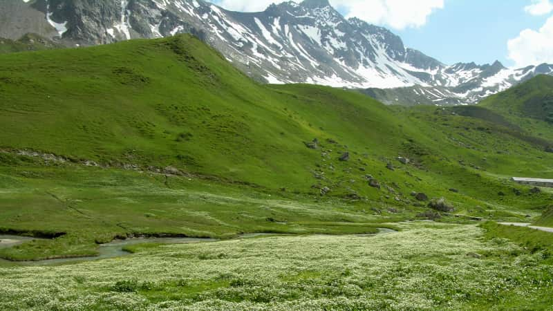Wandelen bij de Col de Saissies
