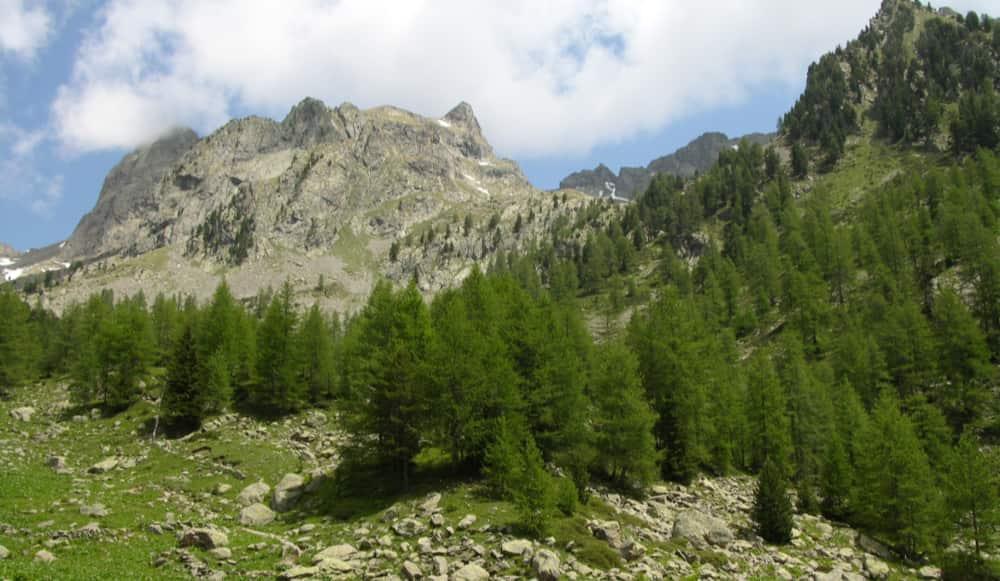 Ruige bergwereld